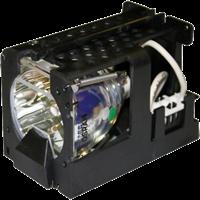 ADTEC AD-PJ705 Lampe mit Modul