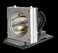 CHANGHONG PDF720P Lampe mit Modul