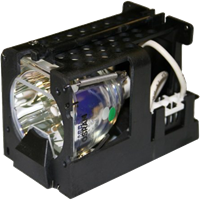 CTX EzPro 705H Lampe mit Modul