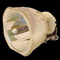 HP VP6111 Lampe ohne Modul