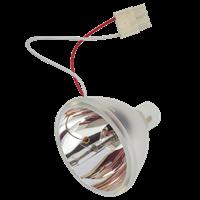 HP VP6312 Lampe ohne Modul