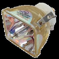 IWASAKI HSCR165Y10H Lampe ohne Modul