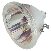 PHILIPS-UHP 100W 1.3 P23 Lampe ohne Modul