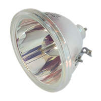 PHILIPS-UHP 200W 1.5 P23 Lampe ohne Modul
