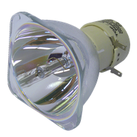 PHILIPS-UHP 210/170W 0.9 E20.9 Lampe ohne Modul