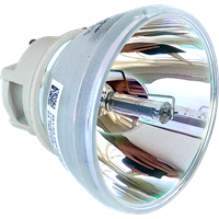 PHILIPS-UHP 240/170W 0.8 E20.7 Lampe ohne Modul