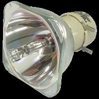 PHILIPS-UHP 260/220W 1.0 E20.9 Lampe ohne Modul