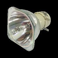 PHILIPS-UHP 270/220W 1.0 E20.9 Lampe ohne Modul