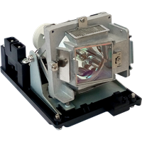 PROMETHEAN PRM35CV1 Lampe mit Modul