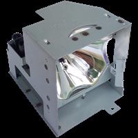 PROXIMA DP5610 Lampe mit Modul