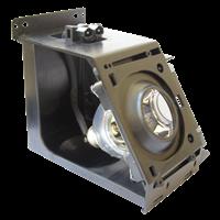 SAMSUNG HL-R5688WX/XAA Lampe mit Modul