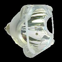 SAMSUNG SP-46L6HV Lampe ohne Modul