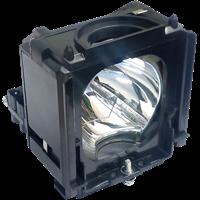 SAMSUNG SP-50L6HD Lampe mit Modul