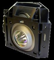 SAMSUNG SP-50L7HXX/XEC Lampe mit Modul