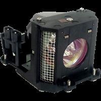 SHARP DT-300 Lampe mit Modul