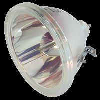 SHARP XG-P10X Lampe ohne Modul