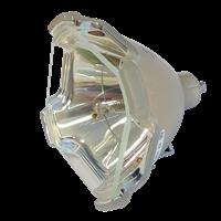 SHARP XG-P25XE Lampe ohne Modul