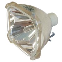 SONY VPL-HS20 Lampe ohne Modul