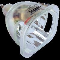 THEMESCENE H30 Lampe ohne Modul