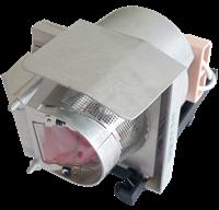 TRIUMPH BOARD PJ3000UST-W Lampe mit Modul
