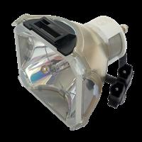 VIEWSONIC PJ1165 Lampe ohne Modul