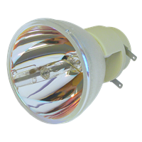 VIEWSONIC PJD5226w Lampe ohne Modul