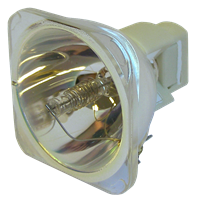 VIEWSONIC PJD6210-WH Lampe ohne Modul