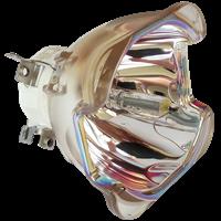 VIEWSONIC PRO8530HDL Lampe ohne Modul
