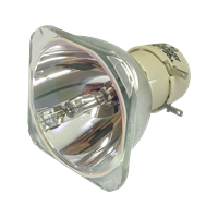 VIEWSONIC PS750W Lampe ohne Modul