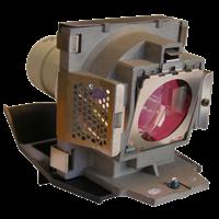 VIEWSONIC RLC-035 Lampe mit Modul