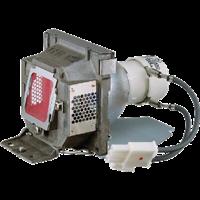VIEWSONIC RLC-056 Lampe mit Modul
