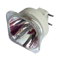 VIEWSONIC RLC-076 Lampe ohne Modul