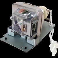 VIEWSONIC RLC-110 Lampe mit Modul
