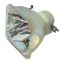 VIVIBRIGHT PRX800UST Lampe ohne Modul